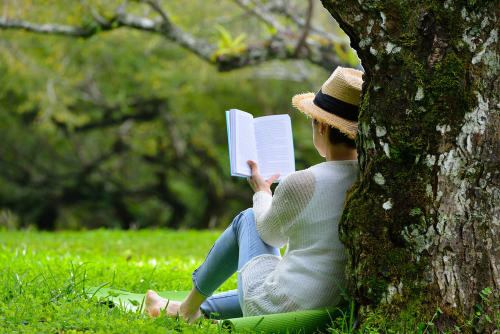 book festivals -