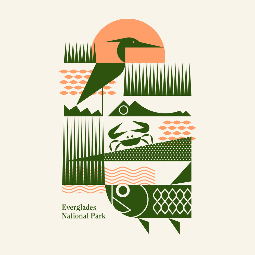 Everglades National Park Alligator and Tarpon Illustration
