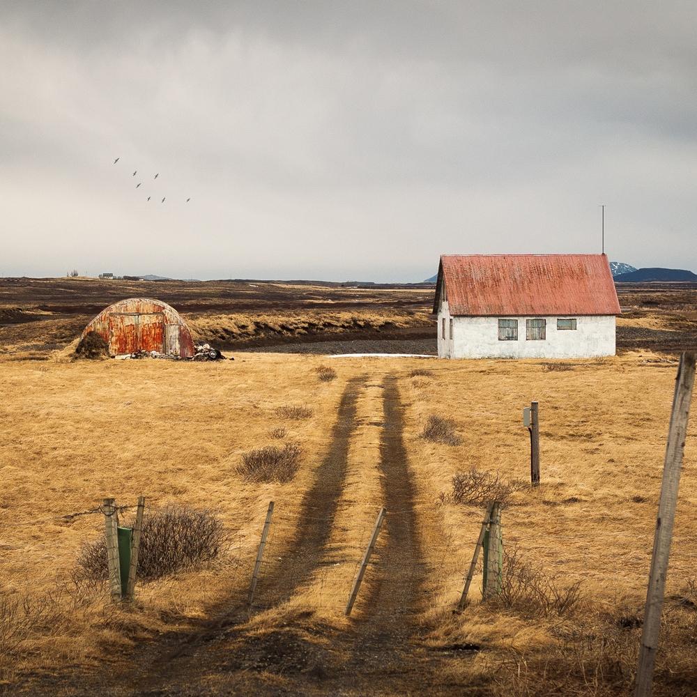 iceland-farm-insurance.jpg