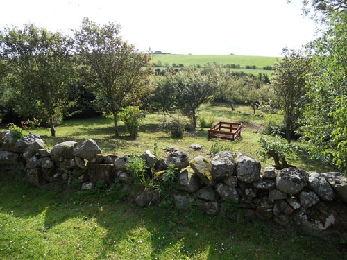 Burnside holiday cottage to let Galloway, front garden views.jpg