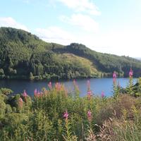 Loch Trool, Galloway Forest Park, wonderful walking.jpg