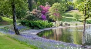 Glorious Galloway Castle Kennedy Gardens in spring.jpg