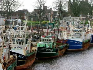 glorious galloway scallop boats tied up at kirkcudbright.jpg