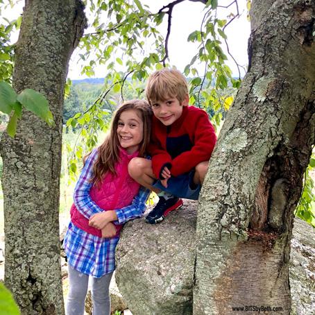 Kids-in-a-Tree.jpg