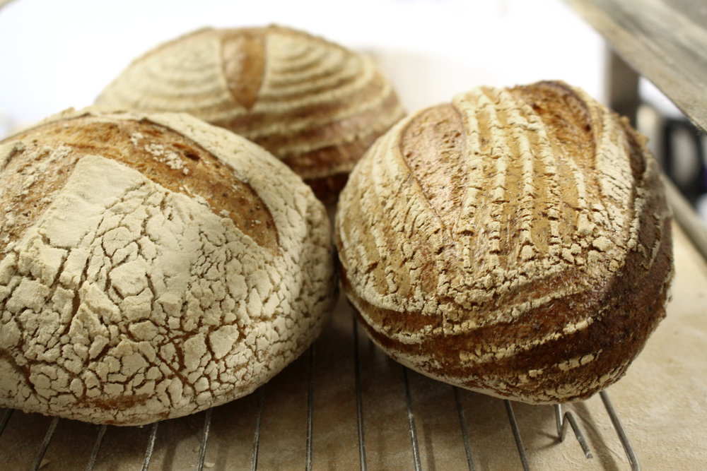 Bread on the rack 2.jpg