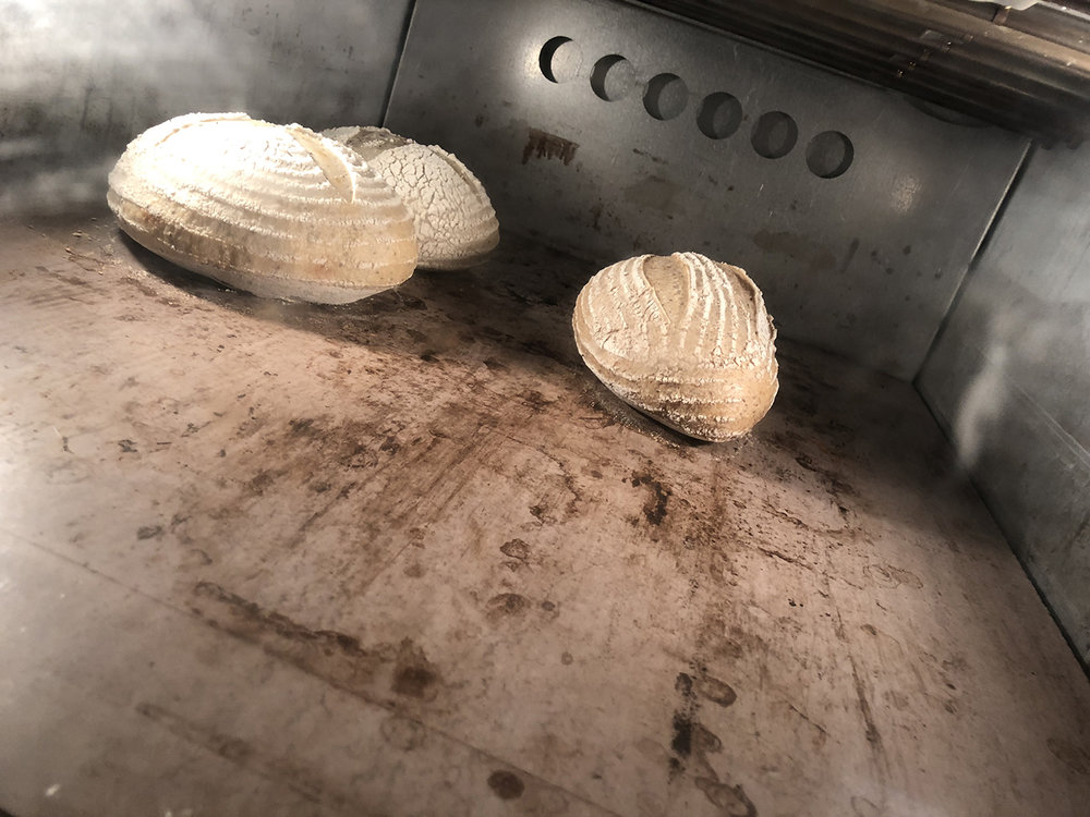 Bread in the oven angle.jpg
