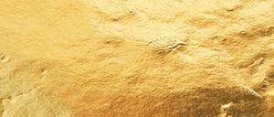 LOGO-gold300.png