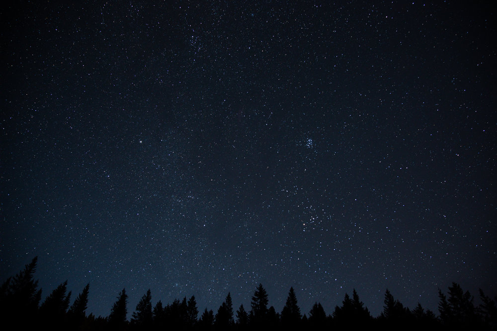 Night-sky-with-stars-and-trees.jpg