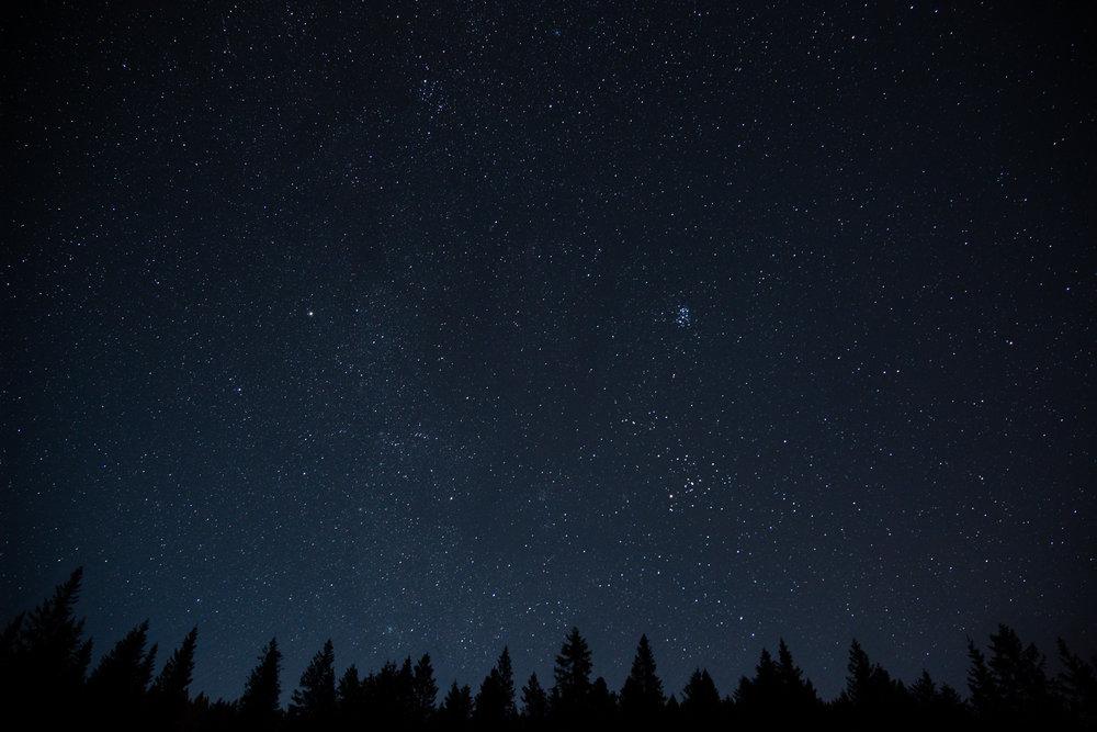 Night-sky-with-stars-and-trees.jpg