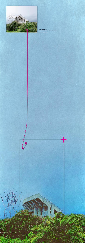 + based on a photo by  Amélie Labourdette