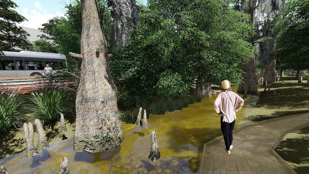 Swamp Walk Perspective