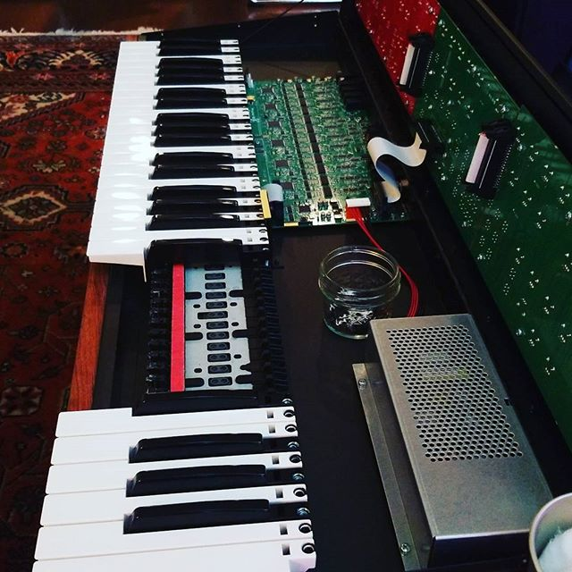 Fall synth cleaning . #prophet12 #dsi #moogisnext
