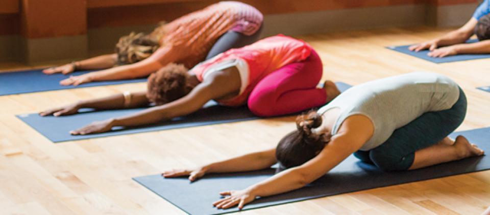 yoga_beginner.jpg