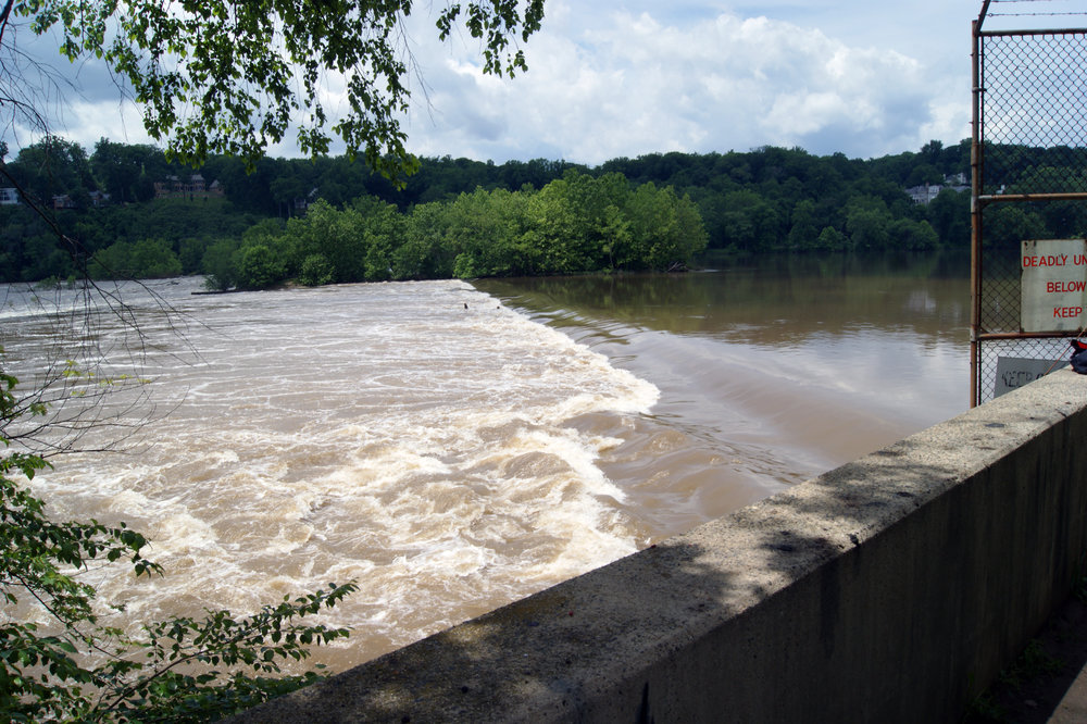 The unfiltered Potomac is still quite muddy after heavy rains, and not very appetizing. Photo: Elliot Carter