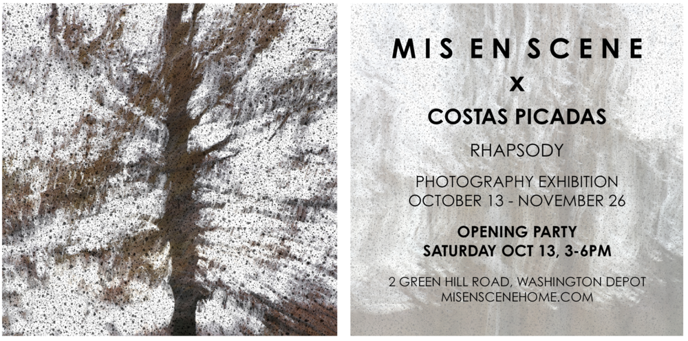 MES x Costas flyer front and back.png