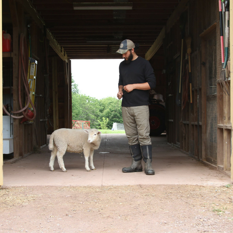 Organic, Local, Pasture-Raised, Sustainable & Regenerative Farming, Farmer Brett Hogancamp