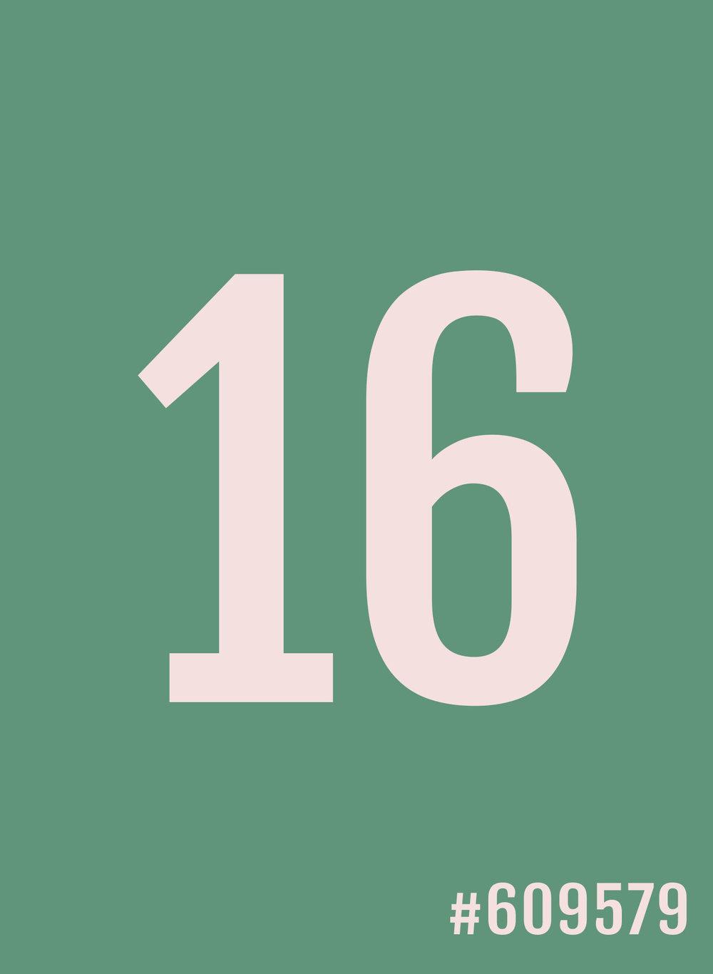 16.jpg