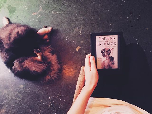 """Forget Columbus. Let's commemorate and honor Native Americans today 💗 Anybody have recommendations for native authors of speculative fiction?? -⠀ #readinginthemargins DAY 8: National Native American Day⠀ -⠀ Mapping the Interior is a horror novella written by Blackfeet author Stephen Graham Jones. It's on my TBR for this month and I'm looking forward to starting it! Also, this coverrrr 😍 Here's the synopsis:⠀ -⠀ """"Walking through his own house at night, a fifteen-year-old thinks he sees another person stepping through a doorway. Instead of the people who could be there, his mother or his brother, the figure reminds him of his long-gone father, who died mysteriously before his family left the reservation. When he follows it he discovers his house is bigger and deeper than he knew.⠀ -⠀ The house is the kind of wrong place where you can lose yourself and find things you'd rather not have. Over the course of a few nights, the boy tries to map out his house in an effort that puts his little brother in the worst danger, and puts him in the position to save them . . . at terrible cost.""""⠀ -⠀ #buriedinbooksoctober Day 8: Familiar, book and pet? 🐶📖 please ignore the fact that my dog is licking himself inappropriately in this photo 😆 -⠀ #writersofinstagram #writerslife #writingcommunity #amwriting #amwritingscifi #novelwriting #creativewriting #readersofinstagram #readersofig #readerslife #readingcommunity #bookstagram #bookstagrammer #bookstagramcommunity #octoberchallenge #diversereads #diversebooks #ownvoices #bookworm #booknerd #bookaddict #booklover #bookish #bookishlife #readinglove #readinglife #amreading"""