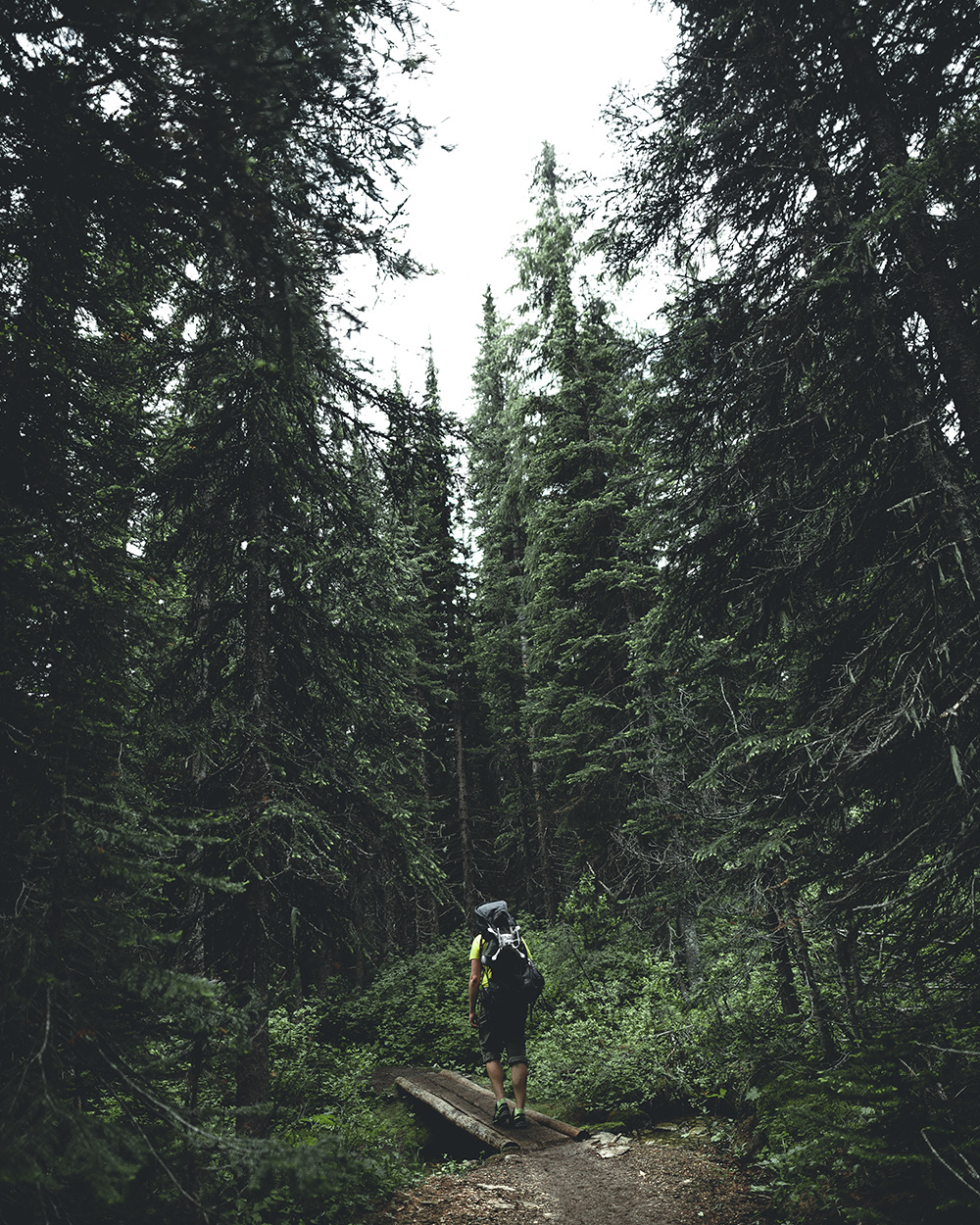 Berg-Lake-Trail-Joel-1.jpg