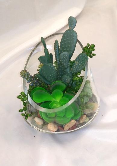 succulent angled glass.jpg