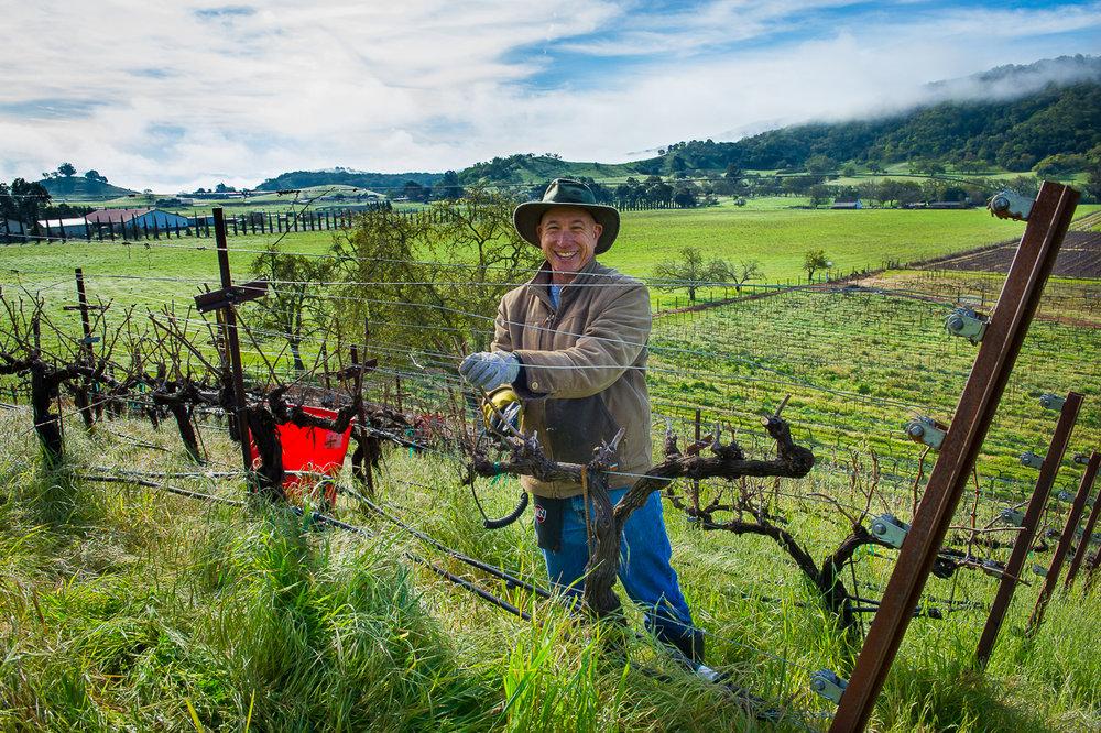 Aver-Family-Vineyards-John-Aver-tending-vines.jpg