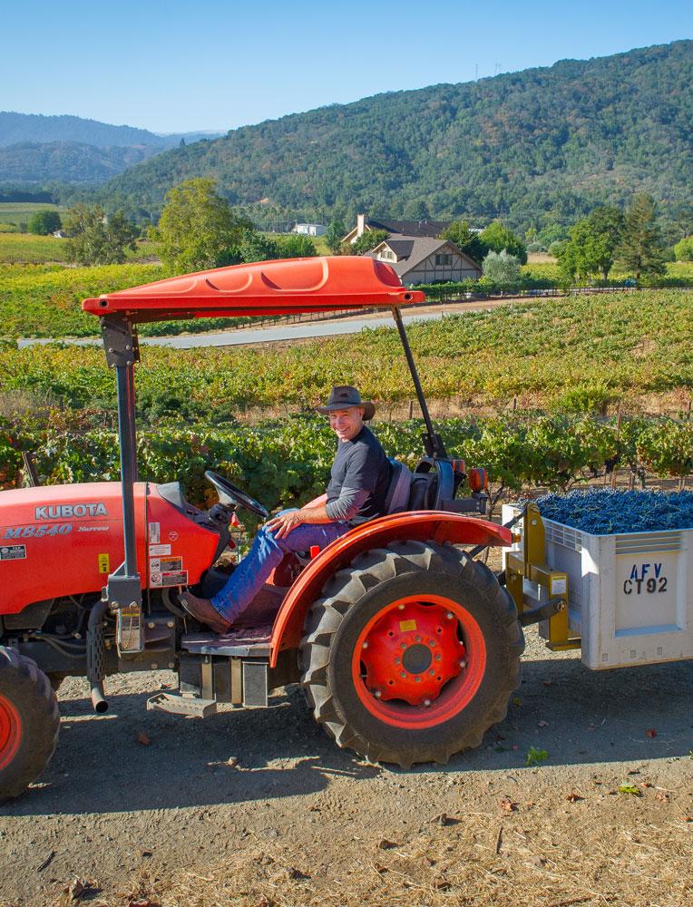 Aver-Family-Vineyards-Harvest-2018.jpg