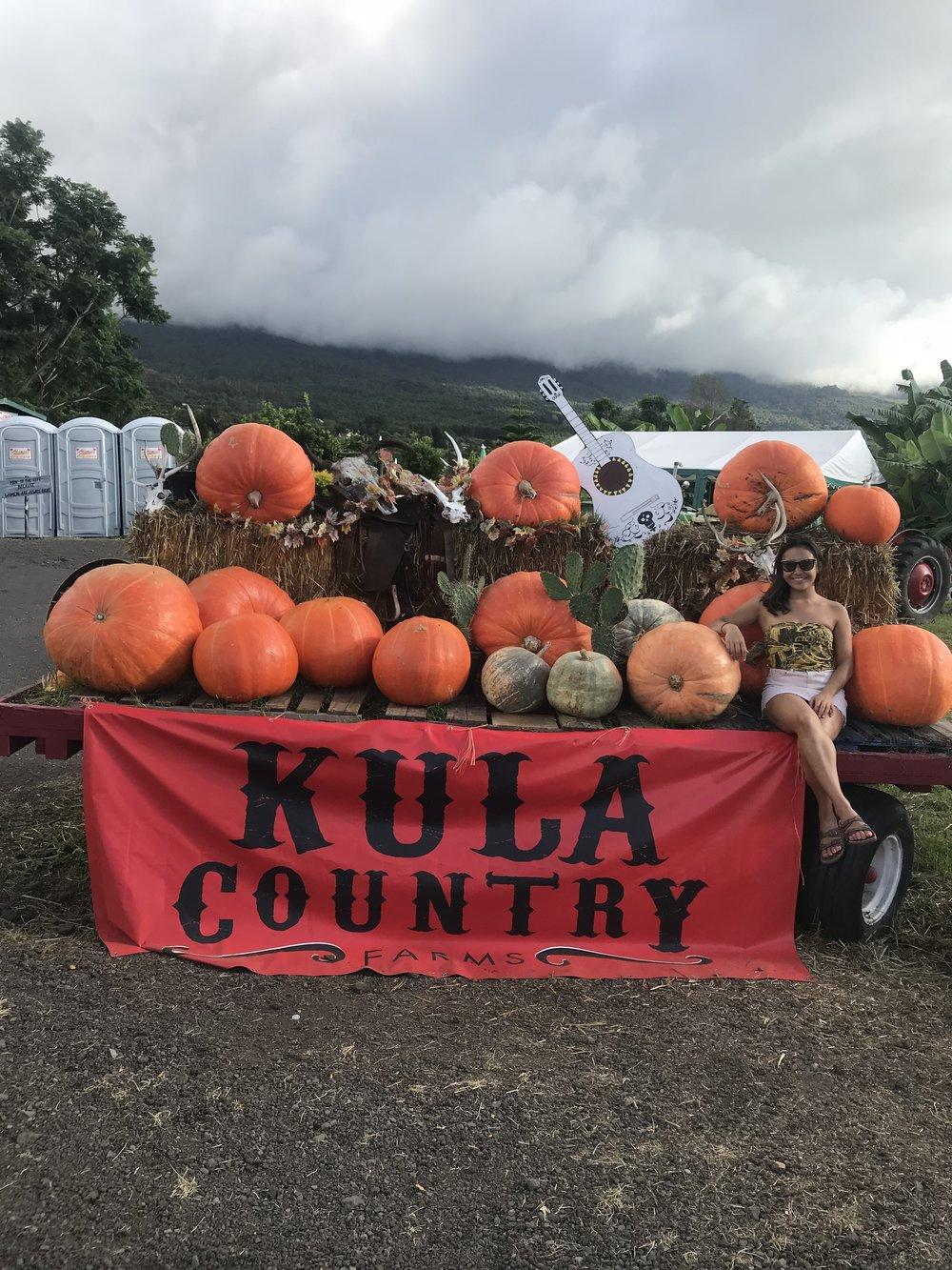 A quick stop at Kula County Farm