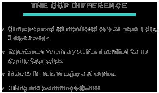 GCP Website Ovehaul.png