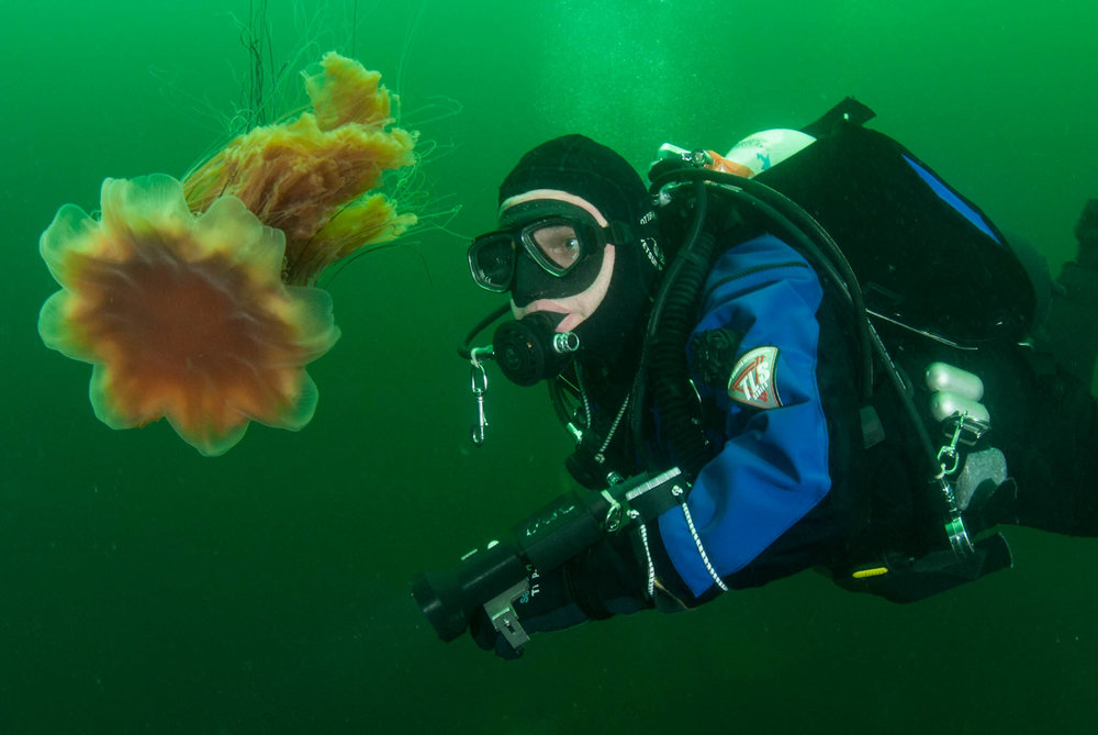 Dave and a Lions Mane Jelly