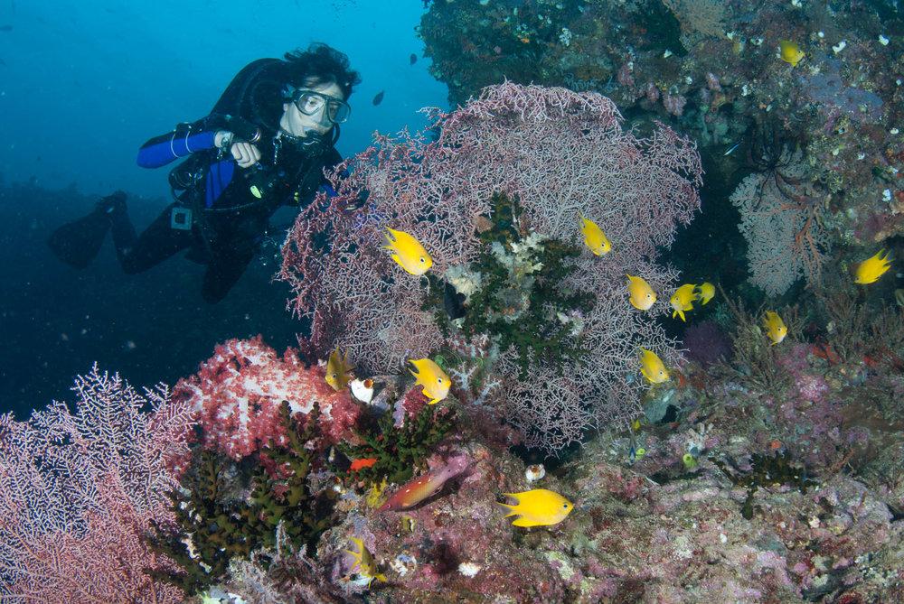 Melissa near Kavieng