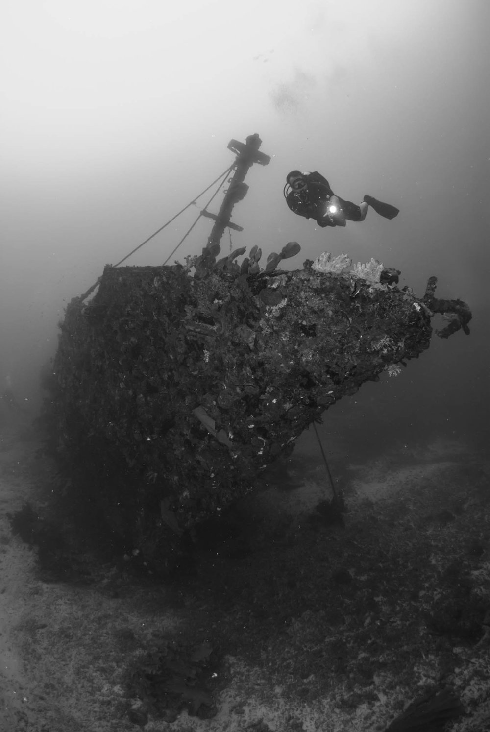 Wreck of the Ann