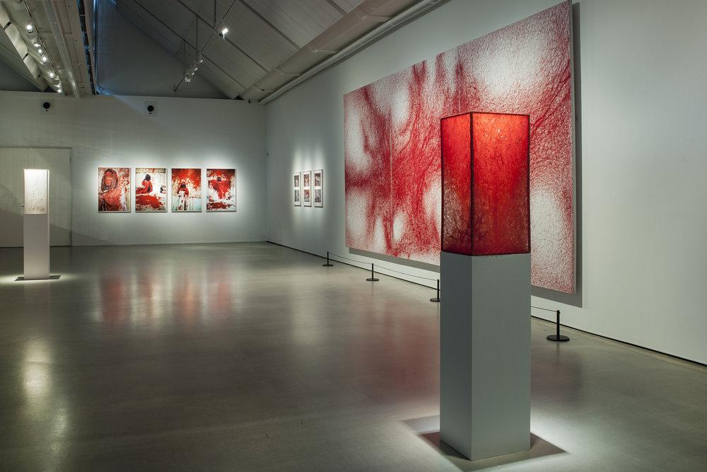 2018_The Distance_Göteborgs konstmuseum, Gothenburg, Sweden, photo by Hossein Sehatlou_8.JPG