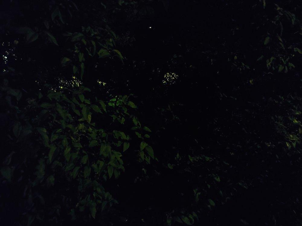 Copy of Night-Mode off