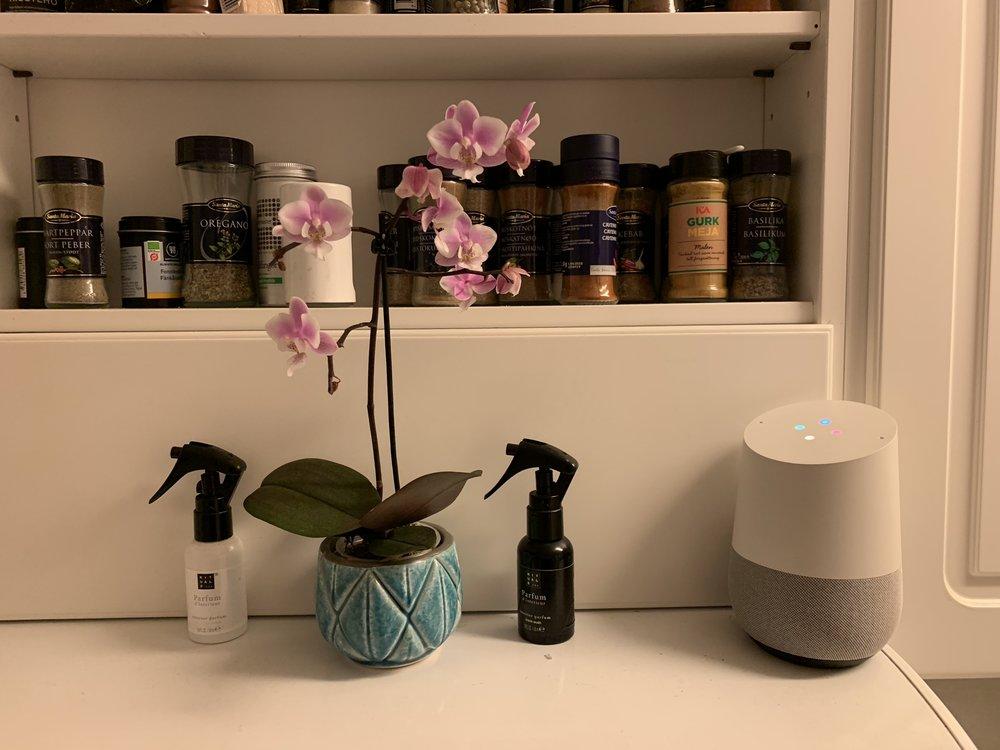 Den originella Google Home högtalaren hittas i köket och agerar dedikerad kökshögtalare.