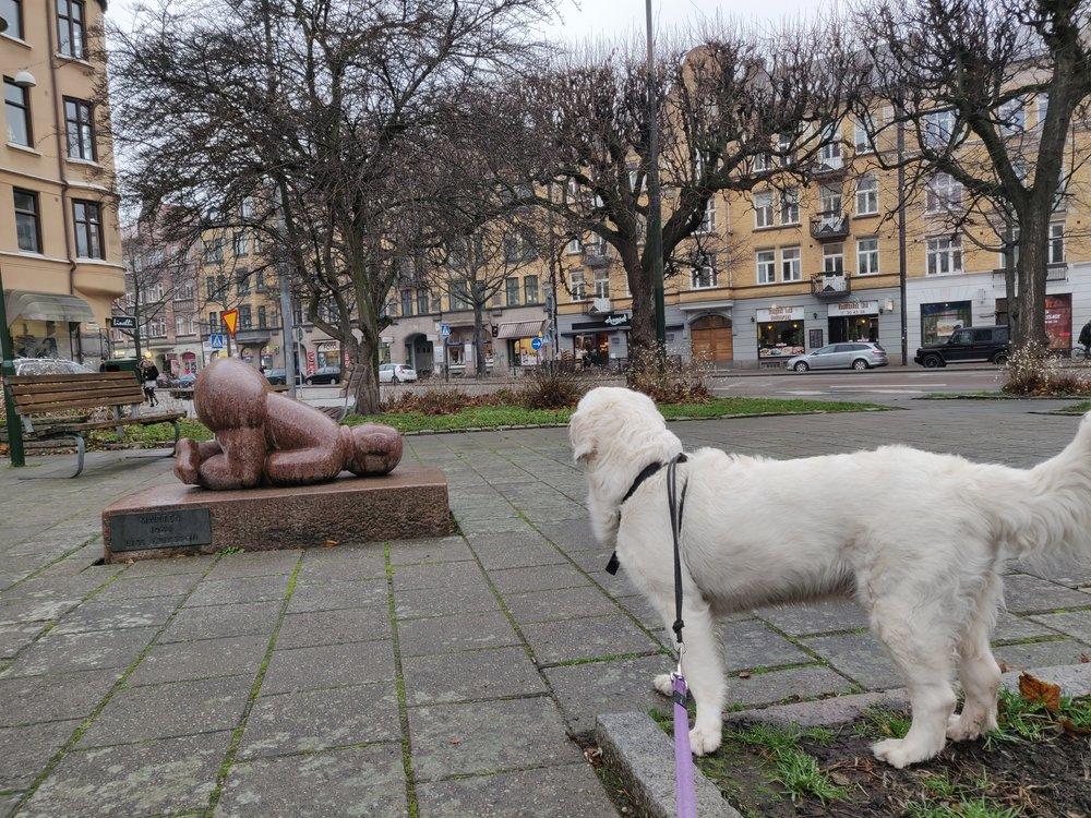 Den konstiga statyn återkommer och även Cendra (hund) verkar undra vad det är.