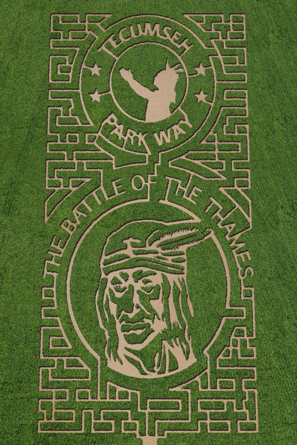 Thamesville Maze 2013.jpg