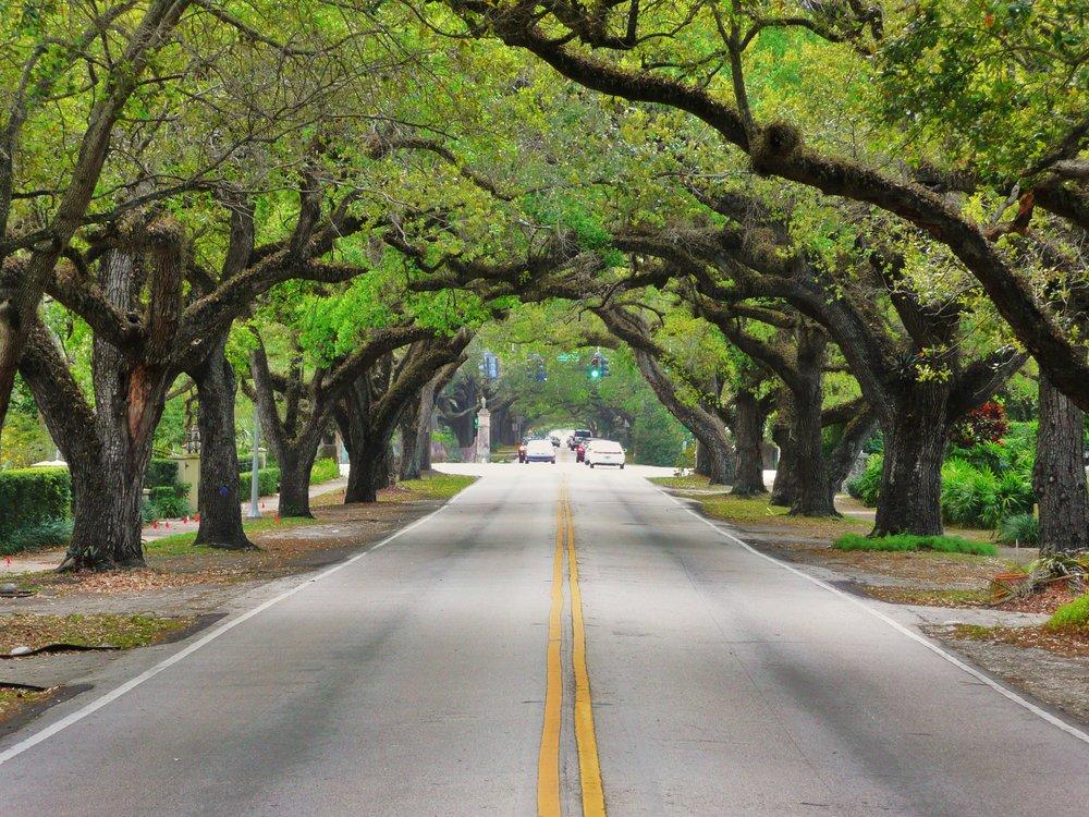 TRIMWORKS TREE SERIVCE -
