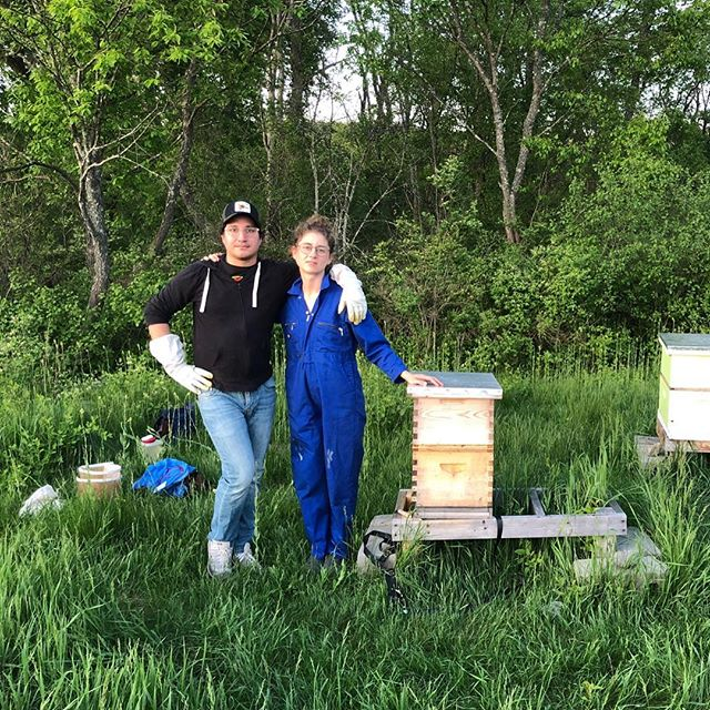 "Guest hive visit from @uglytiredhun where she spotted her first Queen honey bee! 💖""What's that red thing?"""