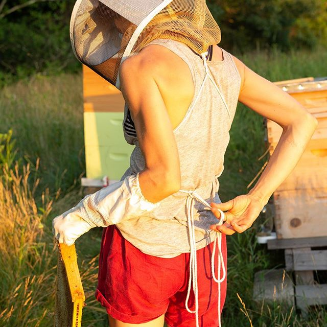 Honeyed light with a honey frame. #beekeeping #honey #goldenhour