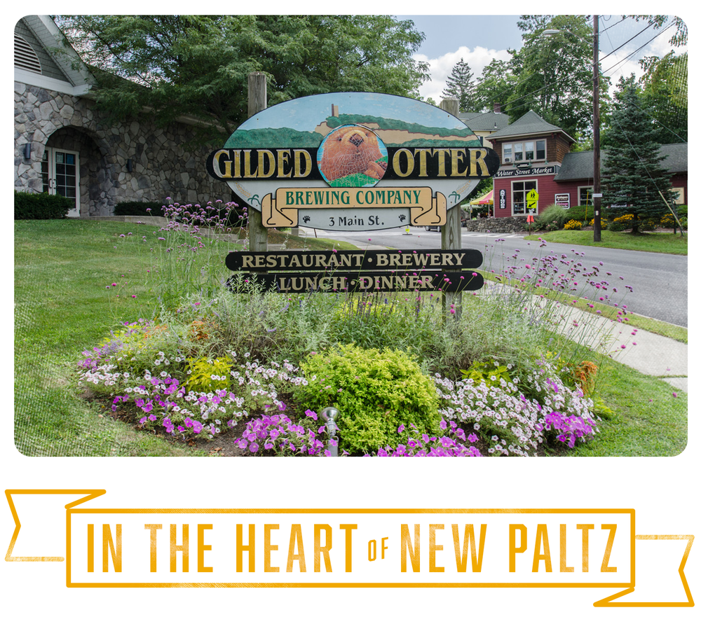 Heart_New_Paltz.png