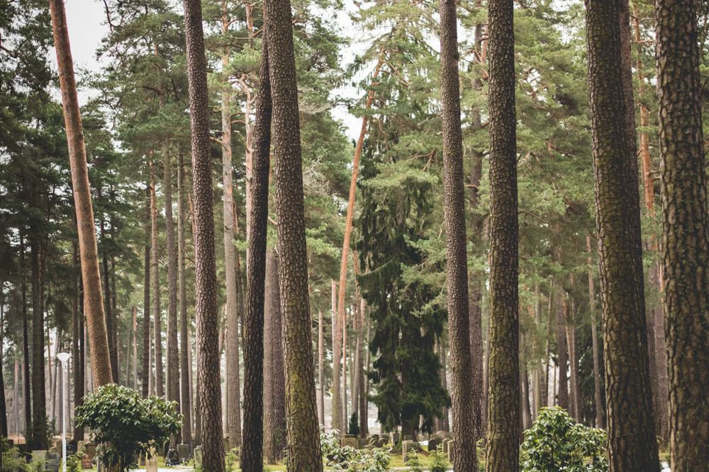 Skogskyrkogården_4