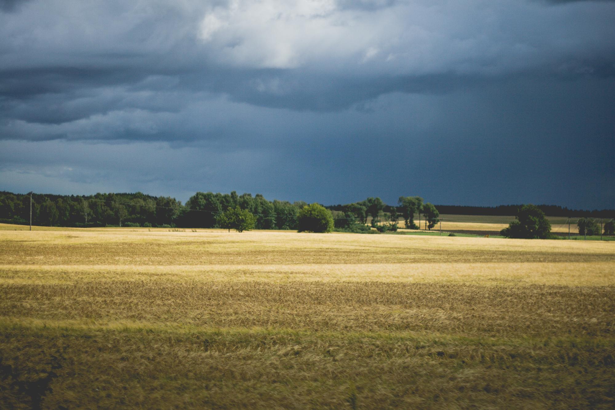 Tågresa genom Sverige