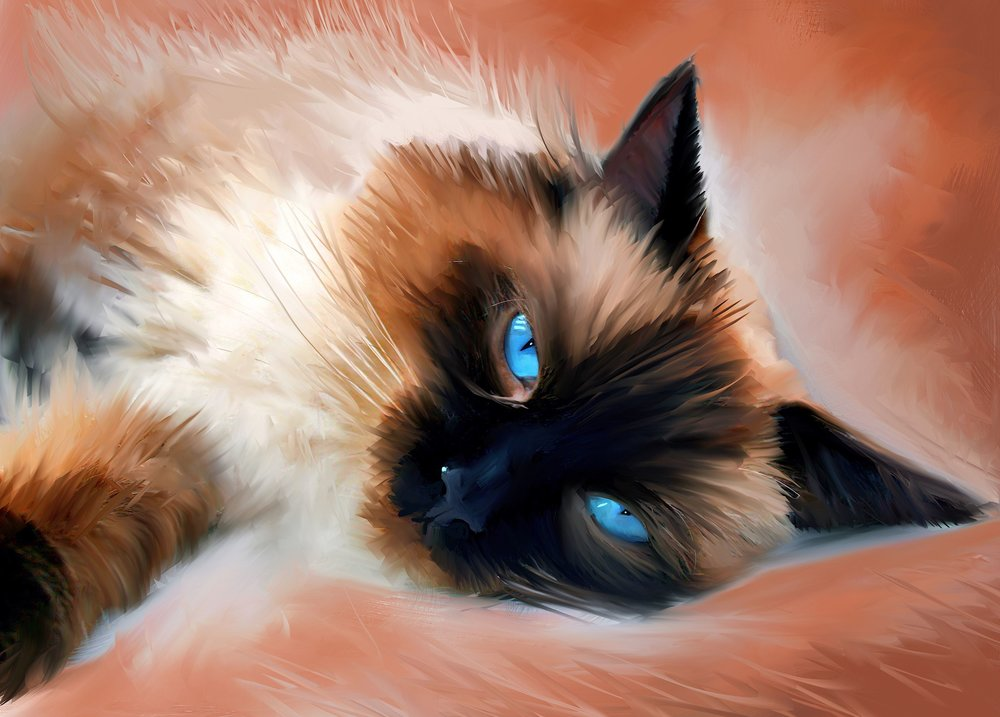 Baily. Pet portrait Agrus competition winner. Master Print available, 16x23%22 .jpg
