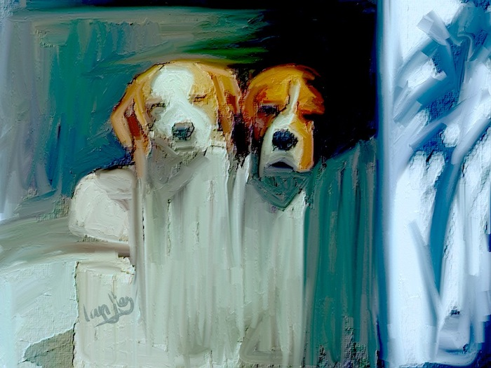 Dylan & Benson.  Master Print canvas available, 16x23%22 and 11x16%22.jpg