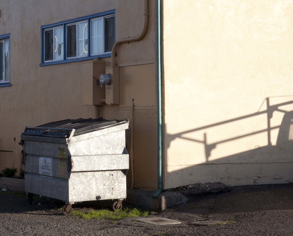 dumpster_flat.jpg