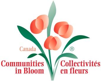 CiB-Logo.jpg