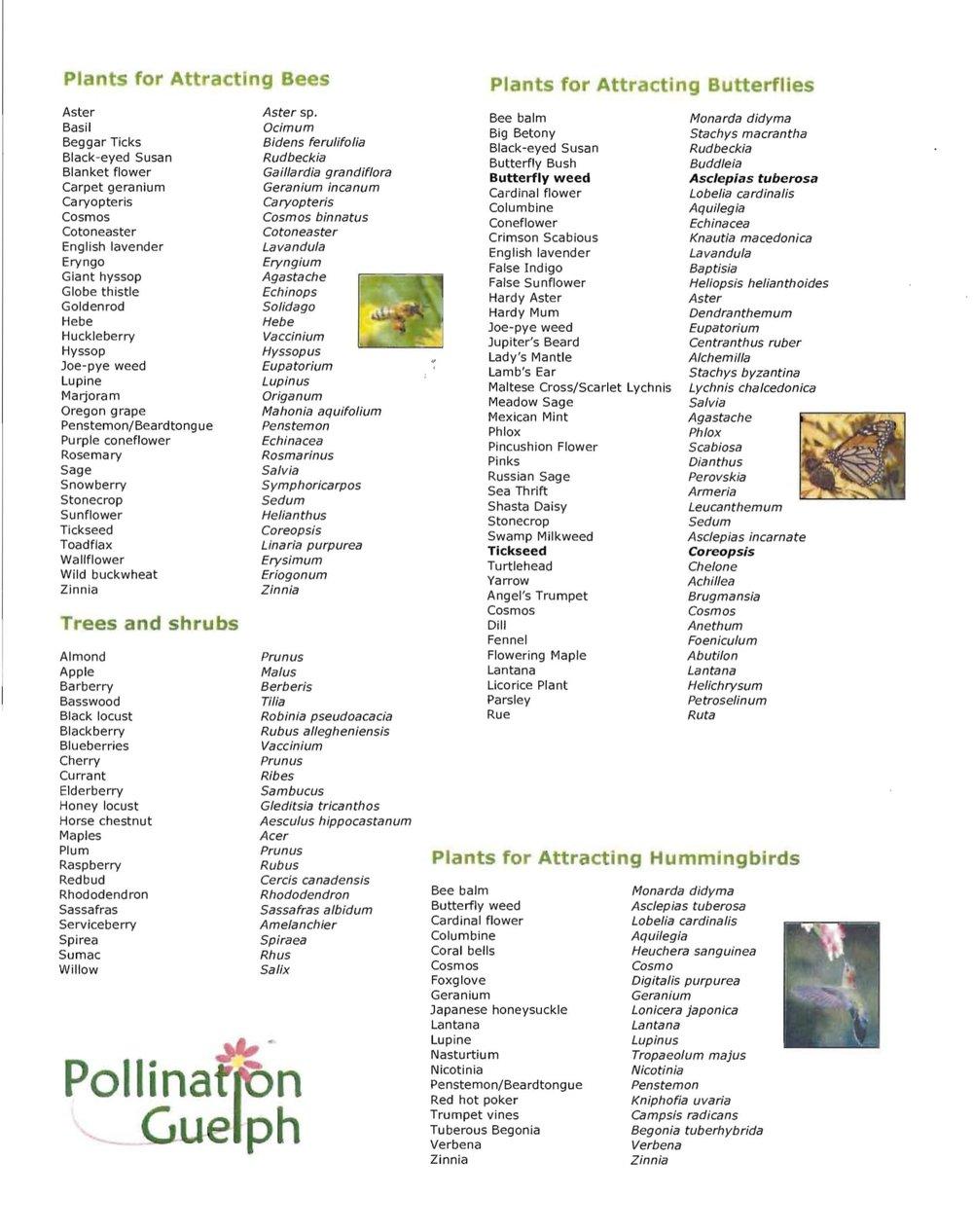 cib pollinator list-1.jpg