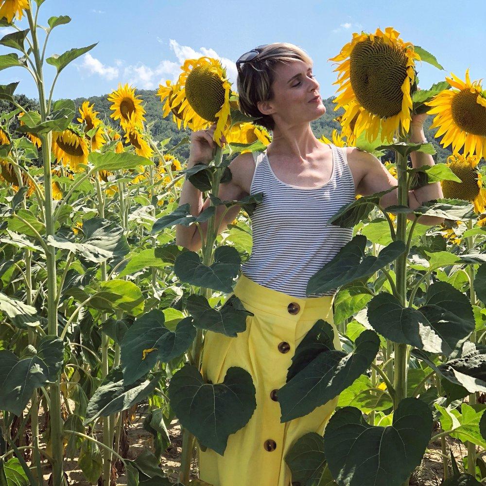 Dom sunflower.JPG