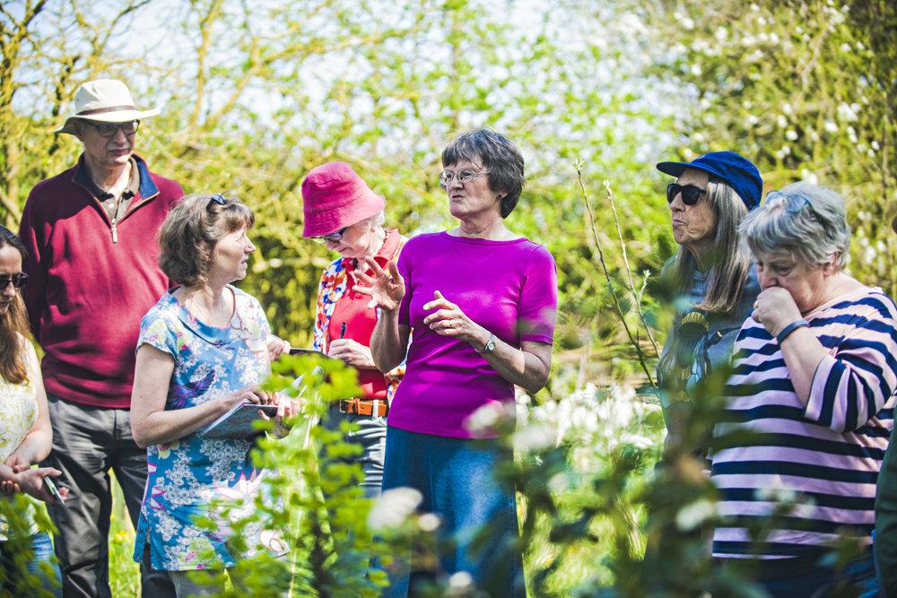 Adult courses- Gardening for Wildlife-John Ferguson15.jpg