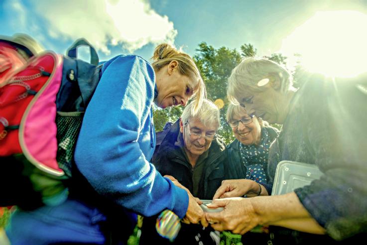 Suffolk Wildlife Trust Invertebrate course